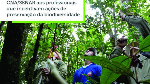Destaque - Dia do Engenheiro Florestal