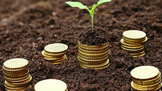 Crédito Investimento Agricultura